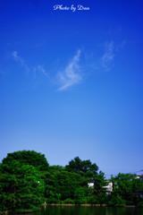 暑い夏の日の朝