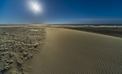 Desert 4(冬の西風)