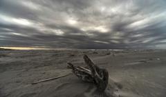 雨上がりの海岸 3