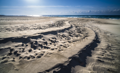 波打つ砂浜