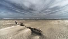 梅雨空の海岸
