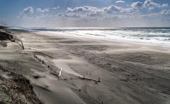 砂嵐の海岸 2