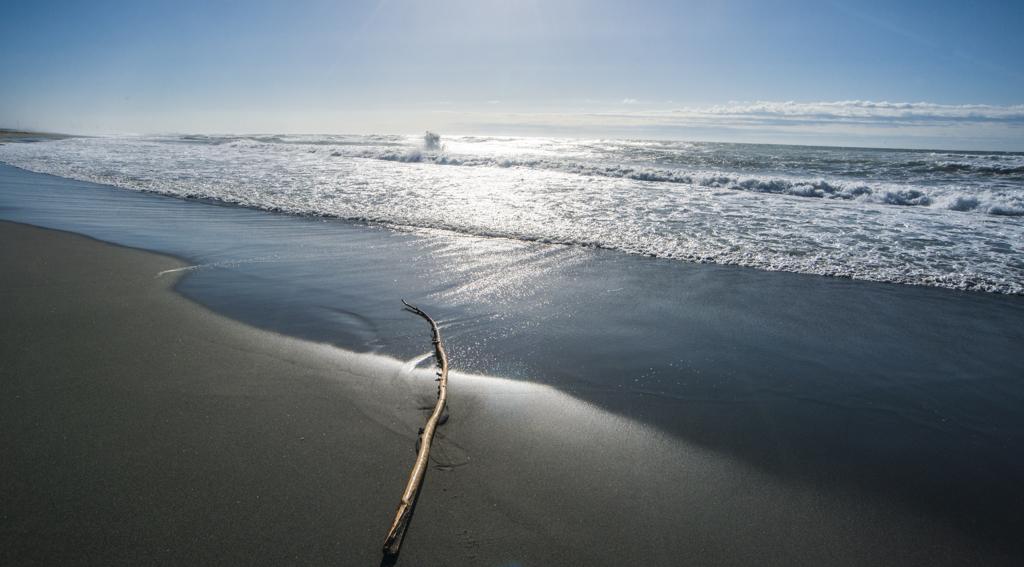 立ち上がる波 2