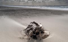 雨上がりの砂浜