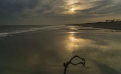 濡れた砂浜