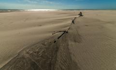 砂の上の風