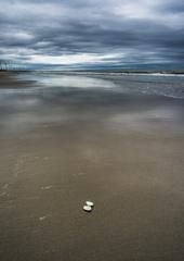 _海の詩 2