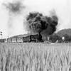 9600 蒸気機関車