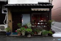 IMG_0289-1 尾道