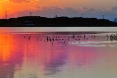 彩りの湖面