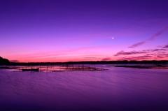有明月の沼