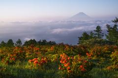 天空の庭園