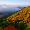 高原から見る富士