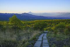 朝陽に輝く高原