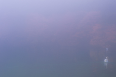 霧に溶けていくように