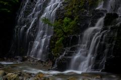 滝波パラダイス