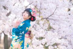 桜と着物女性
