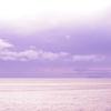 ラベンダー色の海