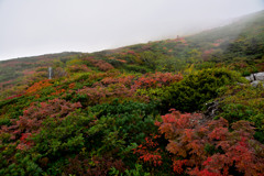八甲田の短い秋