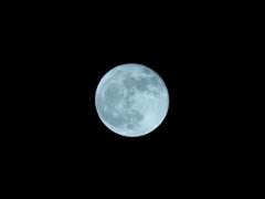 青く撮ってみた。