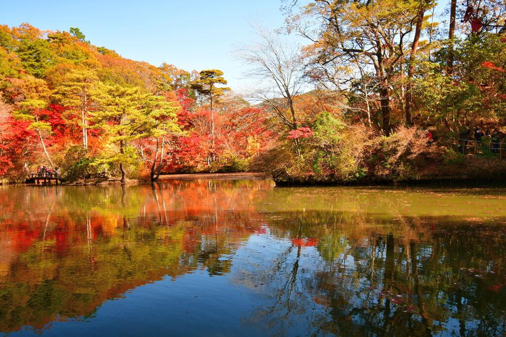 神戸市立森林植物園⑨