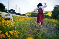 黄色い花道