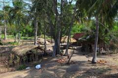 人々の暮らしin Bali ムンジャガン