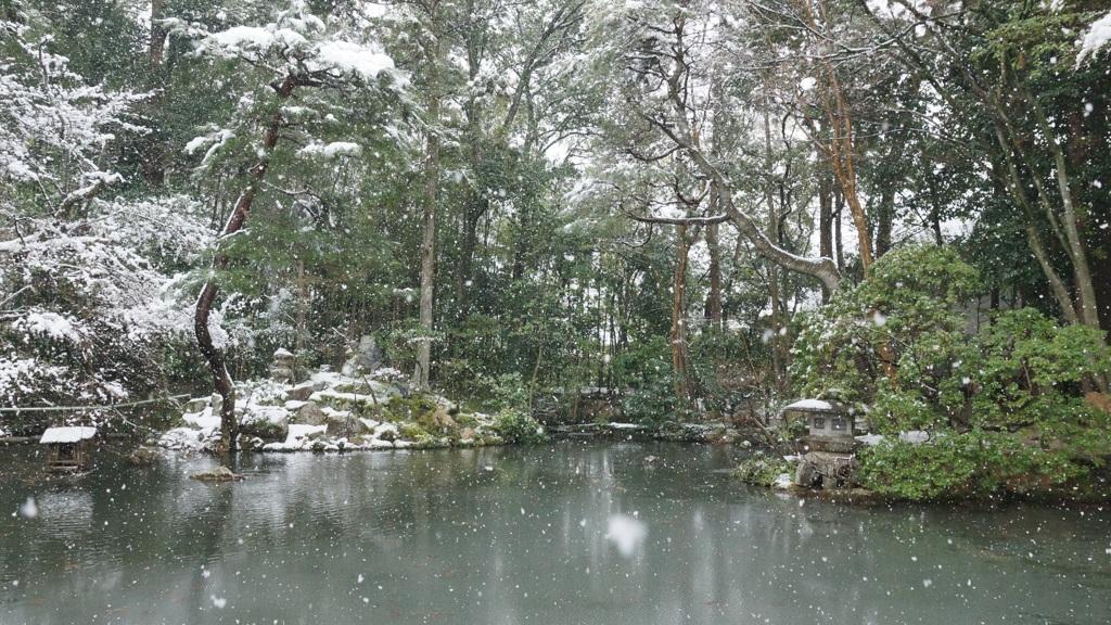 雪の書院南庭