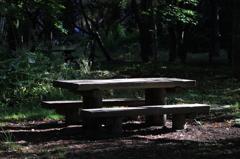 公園の脇役