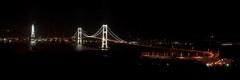 白鳥大橋 -2