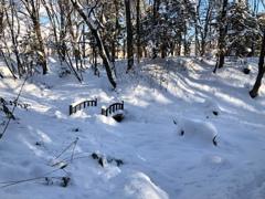 冬の可愛い橋の公園