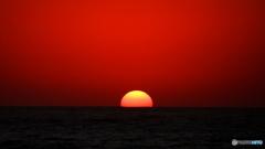 半分の太陽