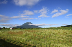 Yo-teizan (羊蹄山) ニセコ