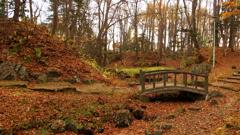 秋の架け橋