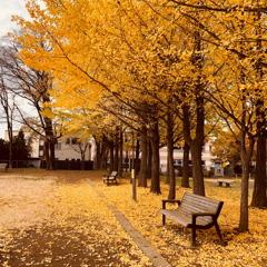 秋で一休み