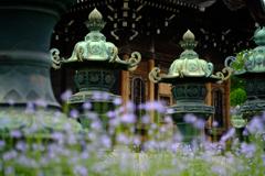 三つ葉葵の石灯籠