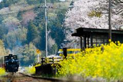 春に向かう列車