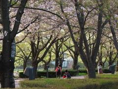 桜舞う散歩道