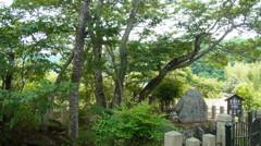 聖徳太子お手植えの桜。