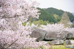 石舞台の春Ⅱ