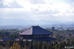 大仏殿と五重塔
