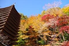 談山神社②