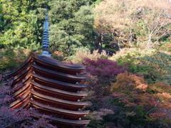 秋 談山神社