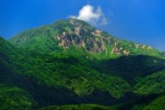 緑化した山頂