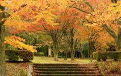 秋色のステージ