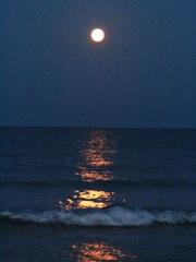 moon light 2