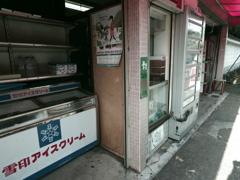 散策嵯峨嵐山#3