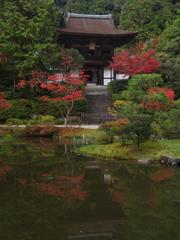 紅葉・円成寺