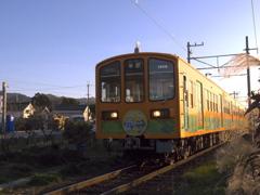 近江鉄道~夕日を浴びて