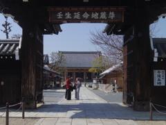壬生寺にて